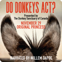 200x200-do-donkeys-act.png
