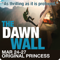 princess---200x200---dawnwall_1.png