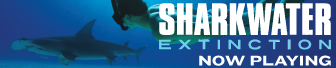 top-banner---sharkwater-extinction.png